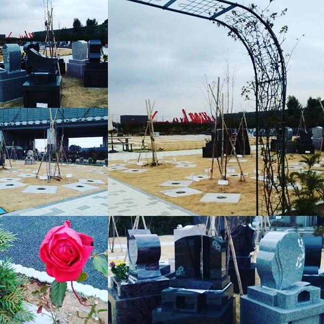 いよいよ新区画開放!埼玉じゃ初のアーチ型墓所