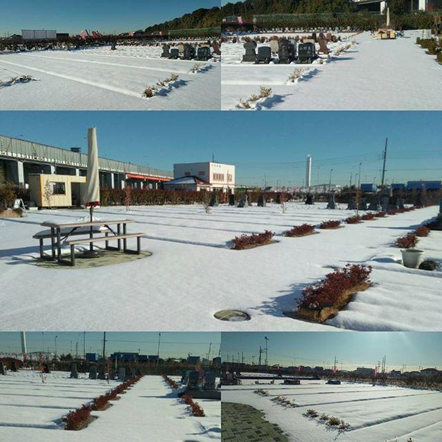 わぁお 雪の吉川霊園